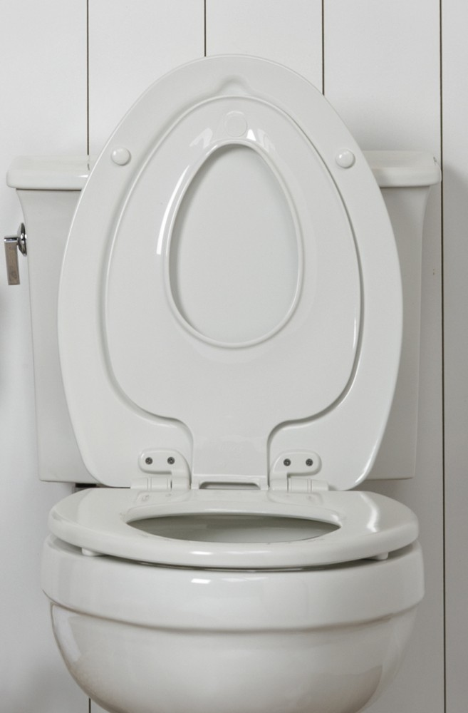 Toilet Seats Toiletseats Com
